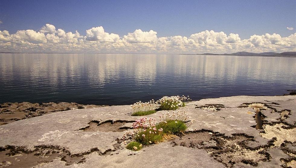 Experience the Burren