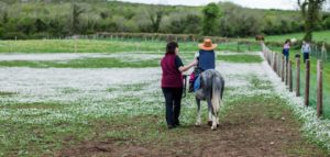 Two people and a horse in a field at The Farmyard Corofin