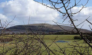 Mullaghmore HIll in the Burren